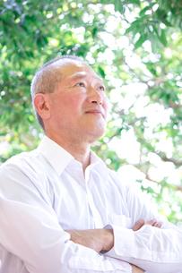 日本人シニア男性の写真素材 [FYI04650545]