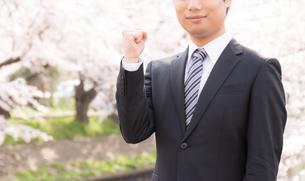 日本人ビジネスマンと桜の写真素材 [FYI04652592]