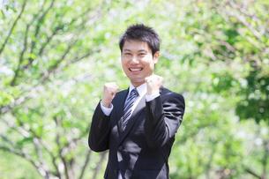 日本人ビジネスマンと新緑の写真素材 [FYI04652659]