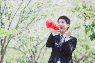 日本人ビジネスマンと新緑の写真素材 [FYI04652670]
