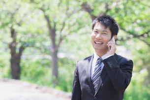 日本人ビジネスマンと新緑の写真素材 [FYI04652694]