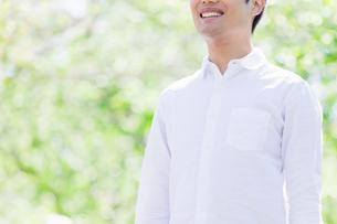 日本人男性と新緑の写真素材 [FYI04652764]