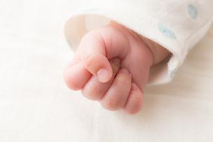 赤ちゃんの写真素材 [FYI04655277]