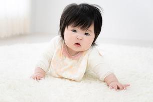 赤ちゃんの写真素材 [FYI04655524]