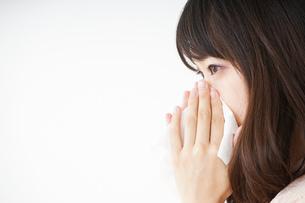 鼻をかむ若い女性の写真素材 [FYI04656040]