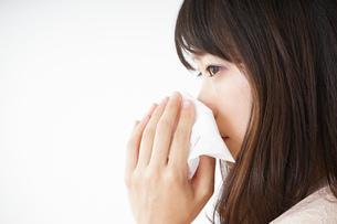 鼻をかむ若い女性の写真素材 [FYI04656041]