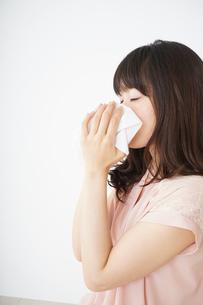 鼻をかむ若い女性の写真素材 [FYI04656045]
