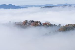 雲海と備中松山城の写真素材 [FYI04656088]