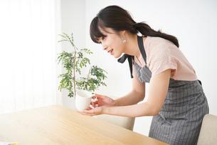 笑顔のカフェスタッフの写真素材 [FYI04656360]