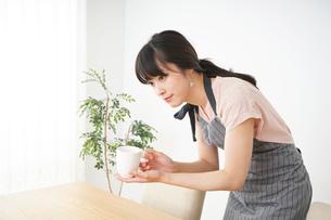 笑顔のカフェスタッフの写真素材 [FYI04656361]
