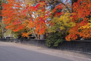 角館武家屋敷の写真素材 [FYI04656858]
