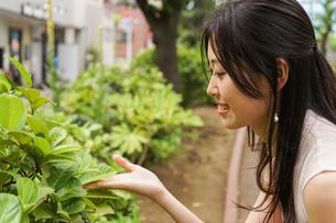 植物を鑑賞する若い女性の写真素材 [FYI04657045]
