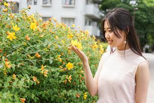 植物を鑑賞する若い女性の写真素材 [FYI04657046]
