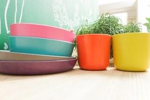 キッチン 食器イメージの写真素材 [FYI04657709]