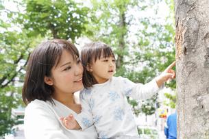 母親 抱っこ 子どもの写真素材 [FYI04658512]