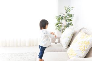 掃除をする子供の写真素材 [FYI04658534]