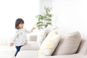 掃除をする子供の写真素材 [FYI04658542]