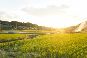 田舎 風景の写真素材 [FYI04659633]