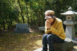 お墓参りをする高齢者の写真素材 [FYI04659653]