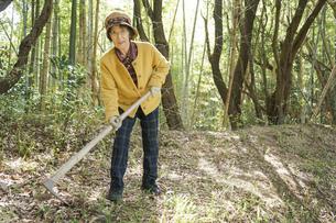 タケノコ刈りをする高齢の女性の写真素材 [FYI04659655]