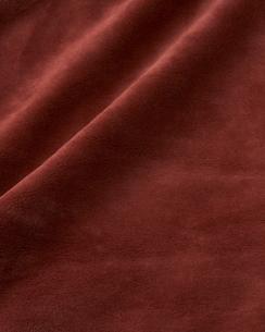 ムートン調の布地の写真素材 [FYI04659719]
