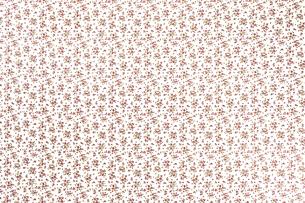 花柄クロスの写真素材 [FYI04659763]