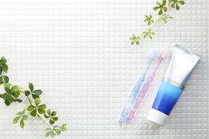 モザイクタイル-白-植物-歯磨きイメージ-真俯瞰の写真素材 [FYI04659836]