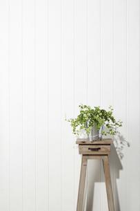 花台-スツール-白木-白壁の写真素材 [FYI04659853]