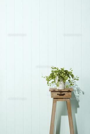 花台-スツール-青壁の写真素材 [FYI04659854]