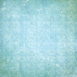 背景素材シリーズ グランジ 植物柄 ボタニカル リーフの写真素材 [FYI04659891]
