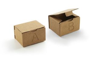 ダンボールの小箱 AとBの2択の写真素材 [FYI04659988]