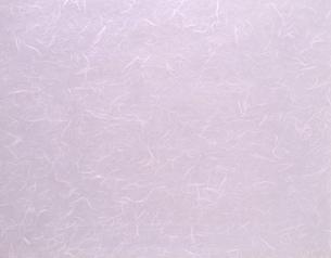 繊維が見える和紙(背景素材)の写真素材 [FYI04660391]