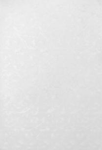 ジャガード織のよう植物柄の布地(背景素材)の写真素材 [FYI04660474]