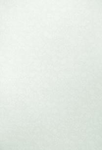 植物柄の淡い緑色の布地(背景素材)の写真素材 [FYI04660477]