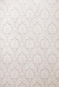 植物をモチーフにした淡いブラウンの壁紙(背景素材)の写真素材 [FYI04660491]