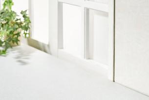 明るい部屋 観葉植物 窓の写真素材 [FYI04660502]