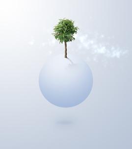 球体に木の写真素材 [FYI04660586]