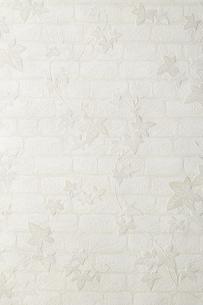 White stylish wallpaperの写真素材 [FYI04660604]