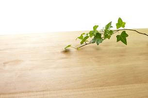 木目と葉っぱの写真素材 [FYI04660621]