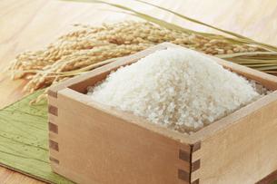 枡に入れた米と稲穂の写真素材 [FYI04660993]