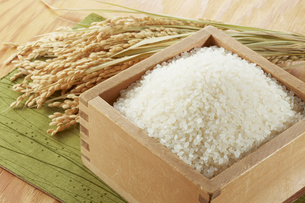 枡に入れた米と稲穂の写真素材 [FYI04661005]