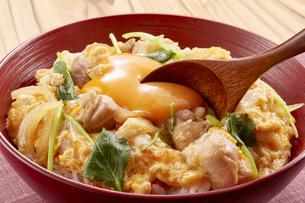 親子丼 (chicken and egg bowl)の写真素材 [FYI04661290]