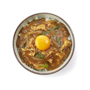 カレー丼の写真素材 [FYI04661293]