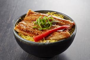 穴子丼の写真素材 [FYI04661344]