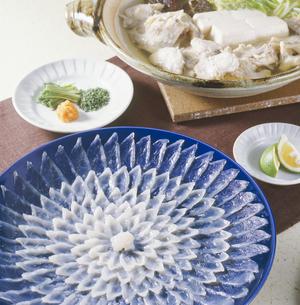 てっさ・てっちり (thinly sliced fugu and hot pot it)の写真素材 [FYI04661448]