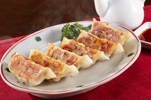 焼き餃子 Japanese Pan-Fried Dumplingsの写真素材 [FYI04661455]