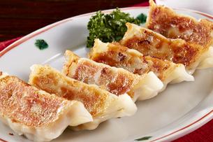 焼き餃子 Japanese Pan-Fried Dumplingsの写真素材 [FYI04661460]