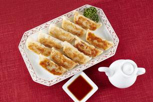 焼き餃子 Japanese Pan-Fried Dumplingsの写真素材 [FYI04661467]