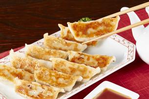 焼き餃子 Japanese Pan-Fried Dumplingsの写真素材 [FYI04661469]