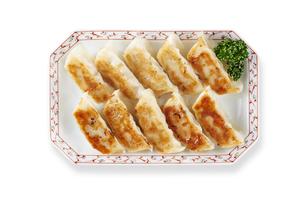 焼き餃子 Japanese Pan-Fried Dumplingsの写真素材 [FYI04661474]